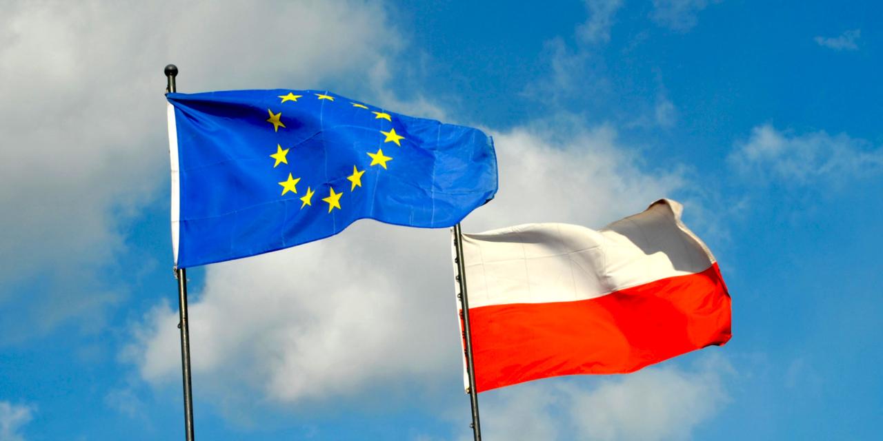 Spotkanie dyskusyjne pt. Europejskie i polskie uwarunkowania wyborów do Parlamentu Europejskiego.