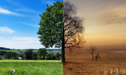 """""""Dylematy polityki klimatycznej – nowy model rozwojowy czy balast dla gospodarki"""" – 23.03.2021   zapraszamy !"""